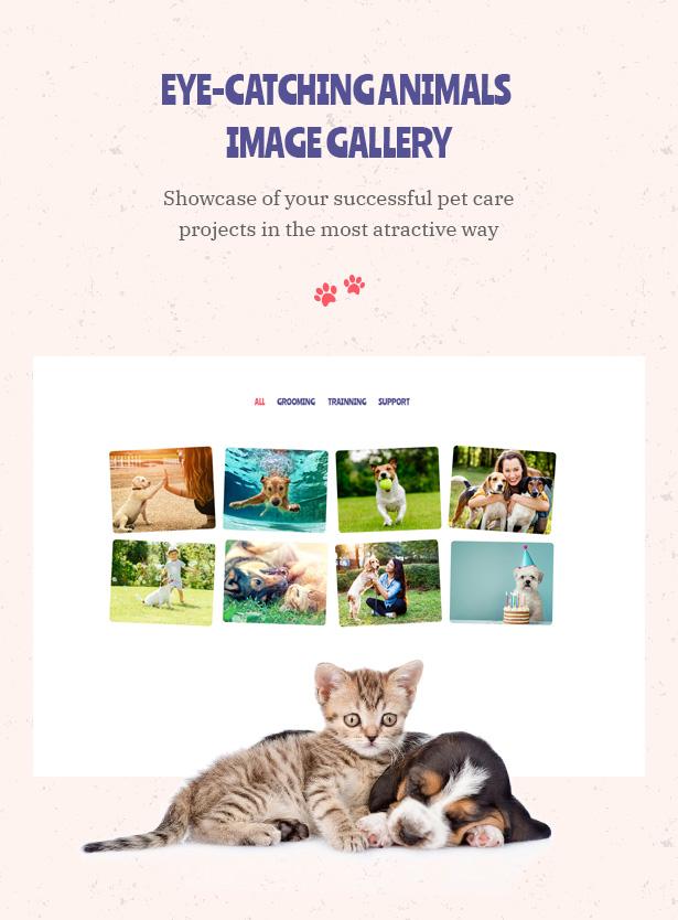 Petie - Pet Care Center & Veterinary Theme WordPress Oeil qui attrape les animaux Image Galleru