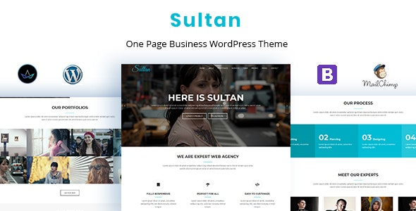 Sultan - Thème WordPress One Page Business - Business Corporate
